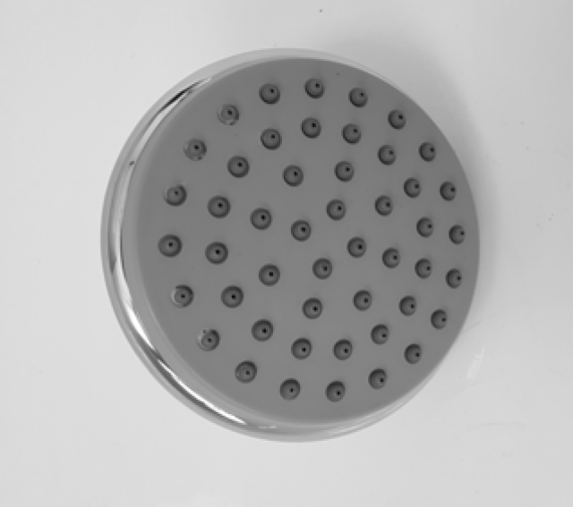 SHOWER ROSE 1 FUNCTION 100MM ROUND