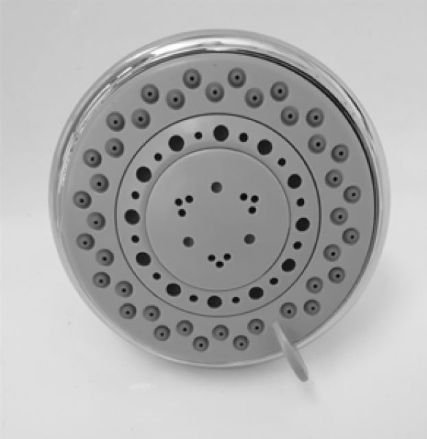SHOWER ROSE 5 FUNCTION 100MM ROUND